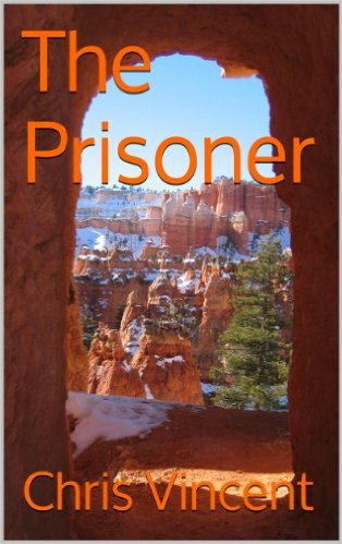 The Prisoner (Book of Arcanes 1)