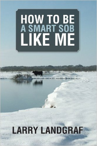 Cover How To Be A Smart SOB Like Me by Larry Landgraf