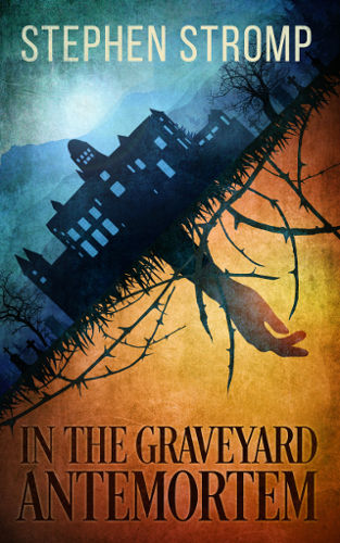Cover In the Graveyard Antemortem by Stephen Stromp