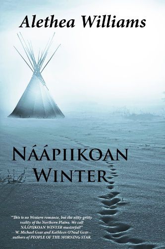 Cover Naapiikoan Winter by Alethea Williams