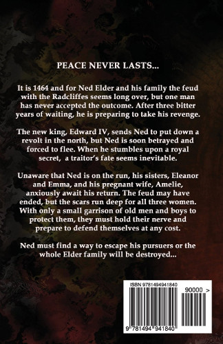 back cover - A Traitors Fate - brothers and rebels 2 by derek birks
