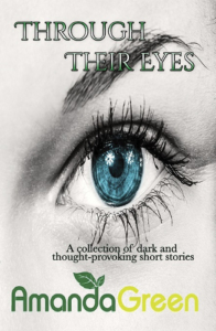 front cover Through Their Eyes by Amanda Green